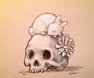skull, rabbit, and Chiara Bautista image