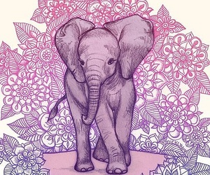 elephant, wallpaper, and mandala image