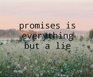 everything, flowers, and lie image