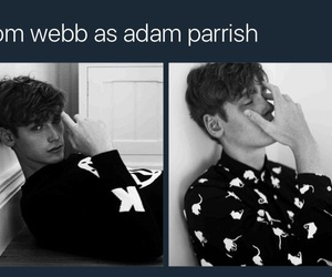 tom webb, the raven cycle, and adam parrish image
