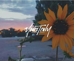 phora and yourstruly image