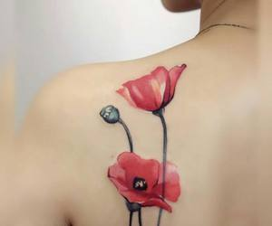 body, poppy, and red image