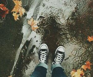 autumn, fall, and rain image