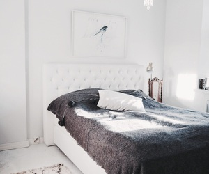 bed and interior image