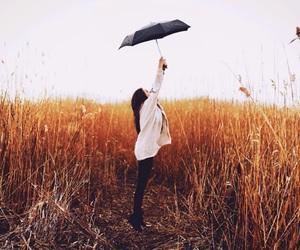 umbrella, girl, and photography image