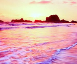 beach, pink, and perfect image