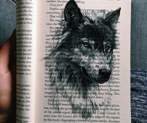 book and wolf image