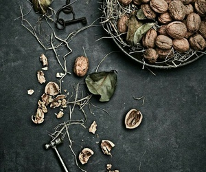 nut and rustic image