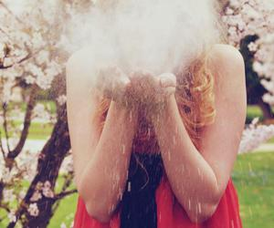 beautiful, flower, and fog image