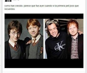 harry potter, Harry Styles, and funny image