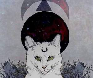 cat, illustration, and moon image