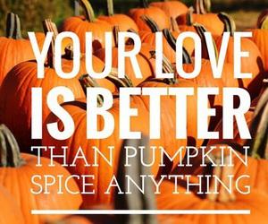 fall, orange, and pumpkins image