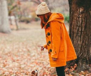 coat, fall, and dog image