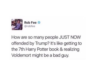 funny, harry potter, and trump image