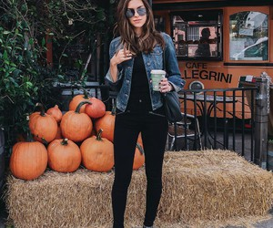fashion, outfit, and pumpkin image