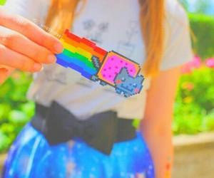 rainbow, cat, and tumblr image