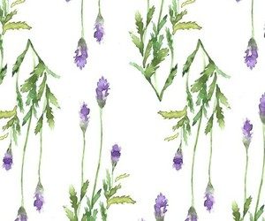 background, lavender, and purple image