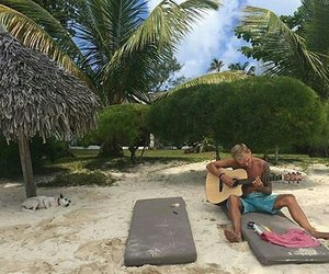 beach, guitar, and palm trees image