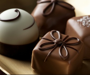 black, brown, and chocolate image