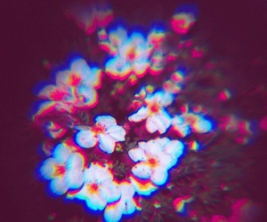 flowers, trippy, and cool image