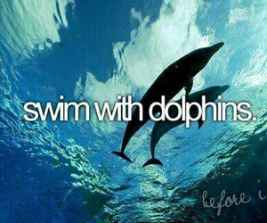 dolphin, swim, and before i die image
