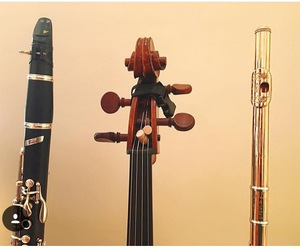 clarinet and violin. flute image