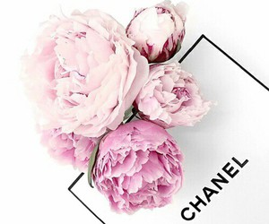 black, chanel, and flowers image