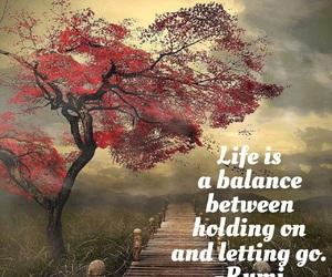 balance, beautiful, and believe image