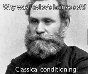 funny and pavlov image