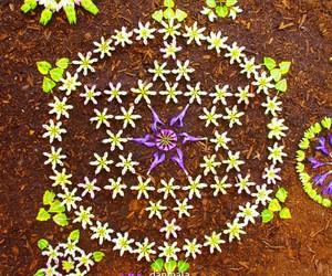 flower, mandala, and zen image