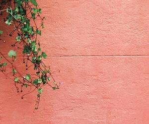 art, minimal, and photography image