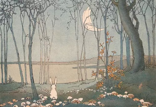 Image de bunny, moon, and forest