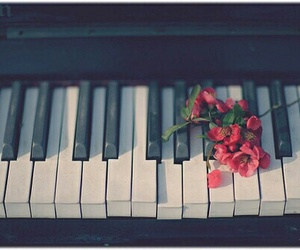flower, music, and piano image