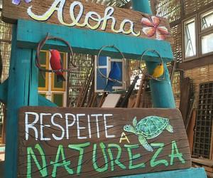 Aloha, colorful, and tumblr image