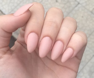 almond, nails, and Nude image