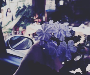 amazing, flower, and photograph image