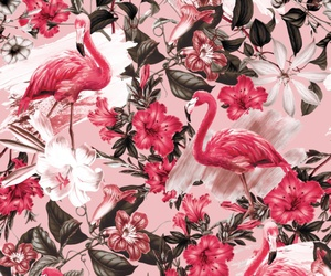 background, pink, and flowers image