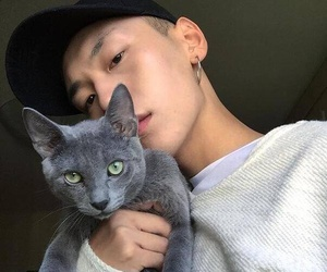 boy, cat, and korean image
