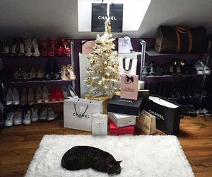 luxury, cat, and chanel image