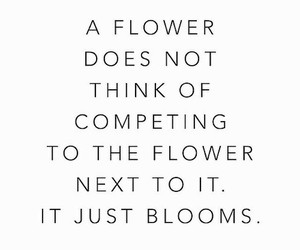 quote, flowers, and beautiful image
