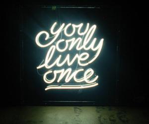 yolo, light, and live image