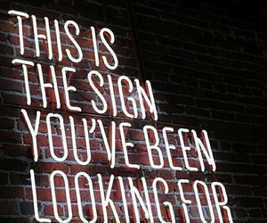 quotes, neon, and sign image