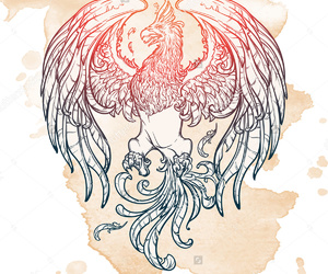 drawing, myth, and phoenix image