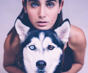 dog, eyes, and animal image