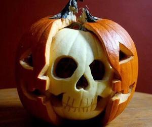 Halloween, pumpkin, and skull image