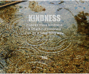 compassion, inspiration, and inspirational image
