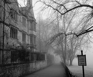 fog and photography image