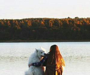 dogs, Rivers, and travel image