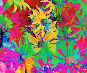 colors, neon, and flowers image
