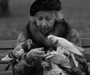 birds and elderly image